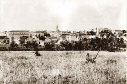 Santeramo in Colle - Panorama 1950